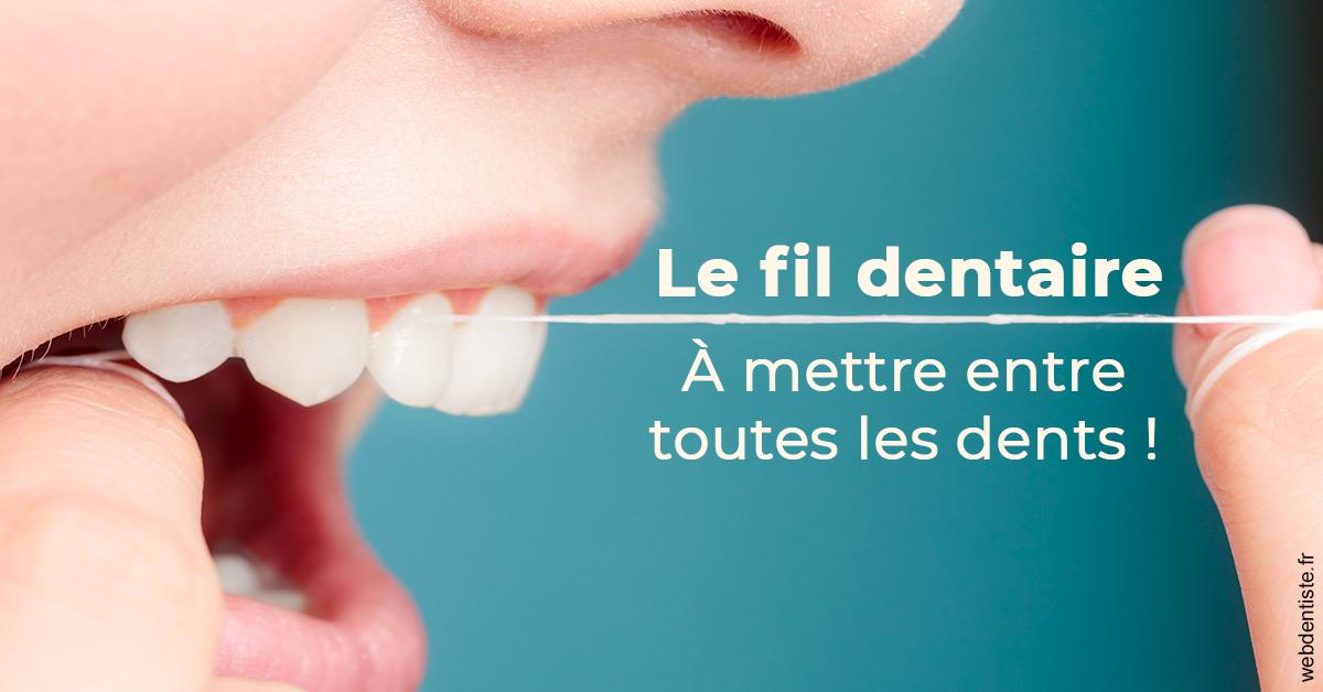 https://dr-bricout-anne-emmanuelle.chirurgiens-dentistes.fr/Le fil dentaire 2